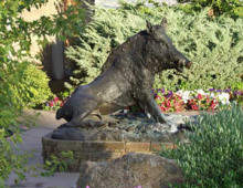 Boar fountain