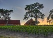 Hope family wines slider